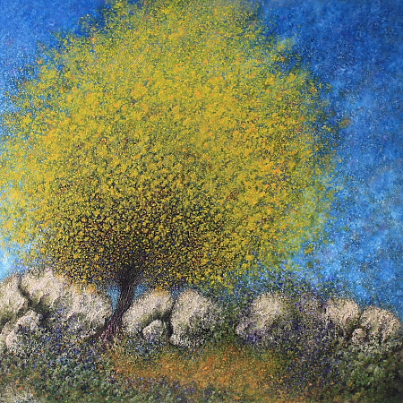 Sallow Wattle - painted by Alan Moloney - 102cm x 102cm . Oil on Canvas