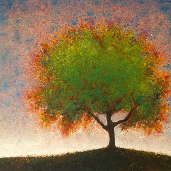 Spring Elm - painted by Alan Moloney - 102cm x 102cm . Oil on Canvas